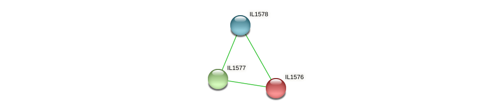 IL1576 protein (Idiomarina loihiensis) - STRING interaction network