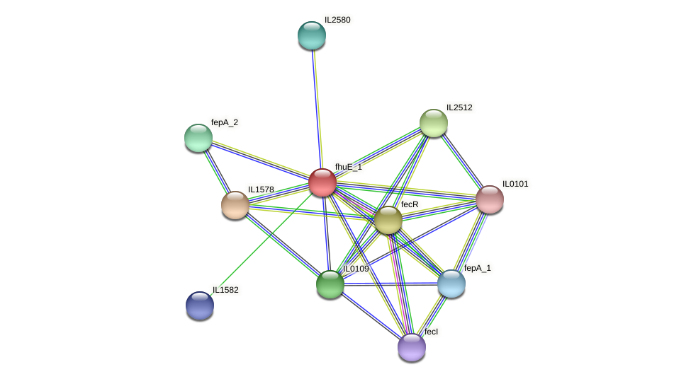 IL1581 protein (Idiomarina loihiensis) - STRING interaction network