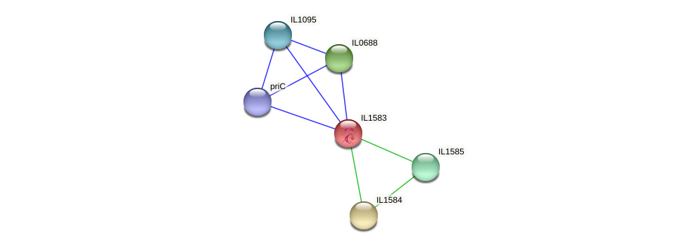 IL1583 protein (Idiomarina loihiensis) - STRING interaction network