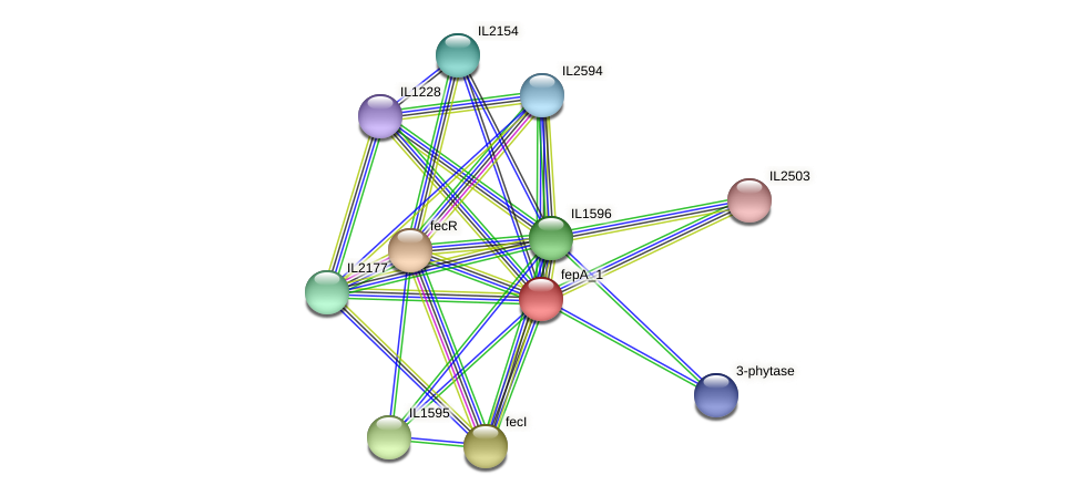 IL1592 protein (Idiomarina loihiensis) - STRING interaction network