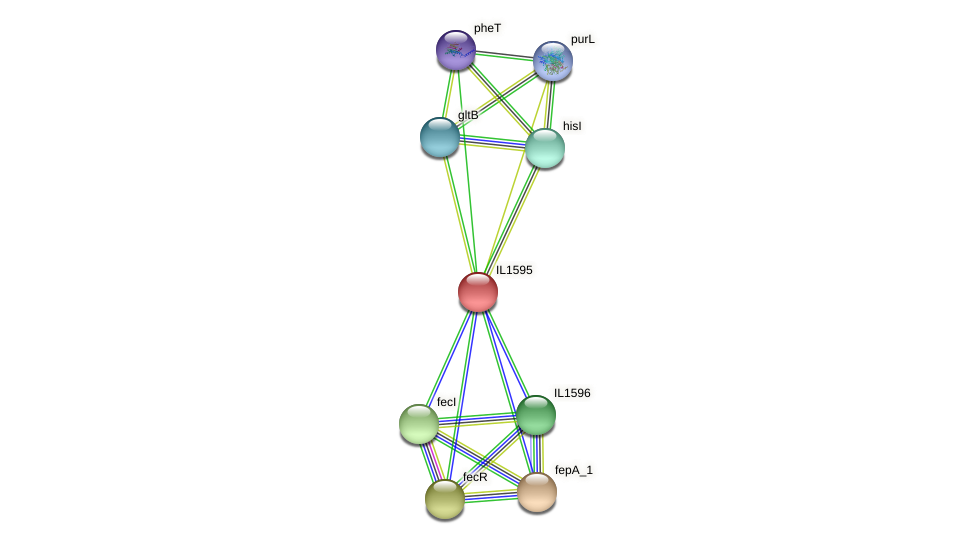 IL1595 protein (Idiomarina loihiensis) - STRING interaction network
