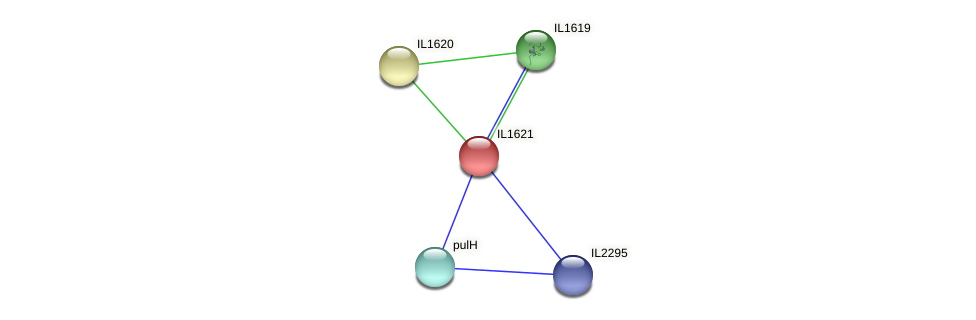 IL1621 protein (Idiomarina loihiensis) - STRING interaction network
