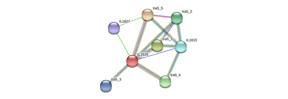 IL1626 protein (Idiomarina loihiensis) - STRING interaction network
