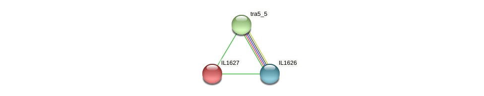 IL1627 protein (Idiomarina loihiensis) - STRING interaction network