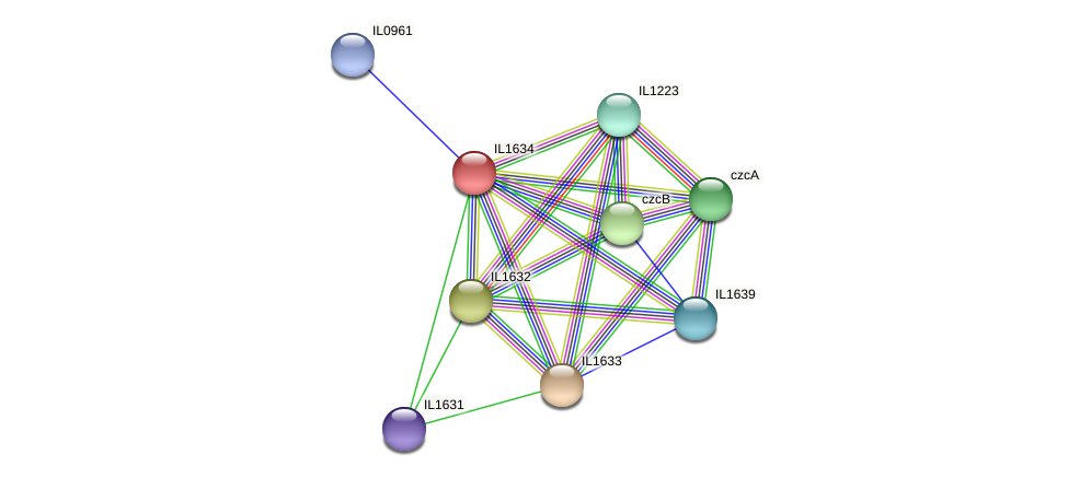 IL1634 protein (Idiomarina loihiensis) - STRING interaction network