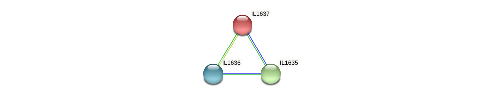IL1637 protein (Idiomarina loihiensis) - STRING interaction network