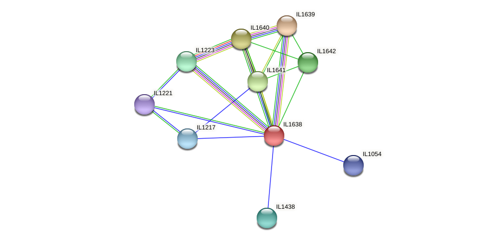 IL1638 protein (Idiomarina loihiensis) - STRING interaction network
