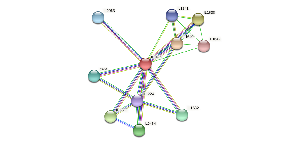 IL1639 protein (Idiomarina loihiensis) - STRING interaction network