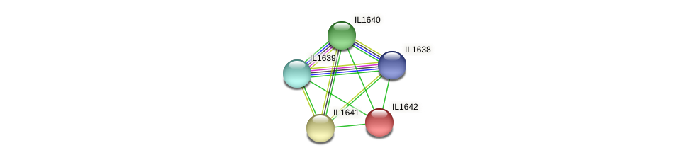 IL1642 protein (Idiomarina loihiensis) - STRING interaction network