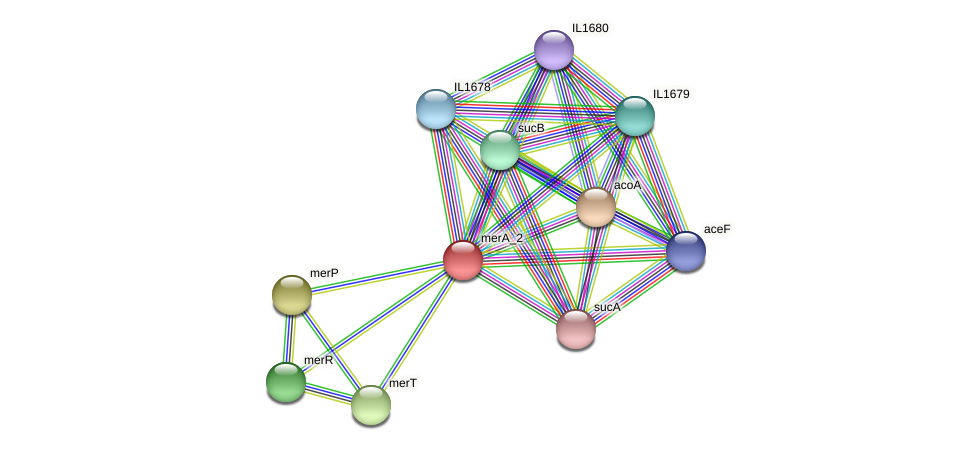 merA_2 protein (Idiomarina loihiensis) - STRING interaction network