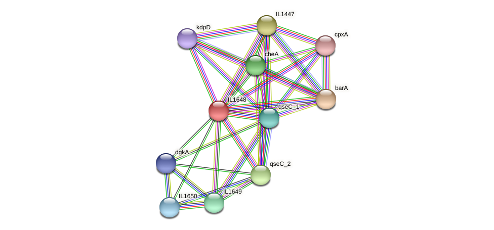 IL1648 protein (Idiomarina loihiensis) - STRING interaction network