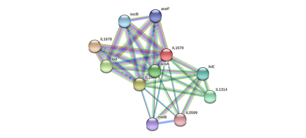 IL1679 protein (Idiomarina loihiensis) - STRING interaction network