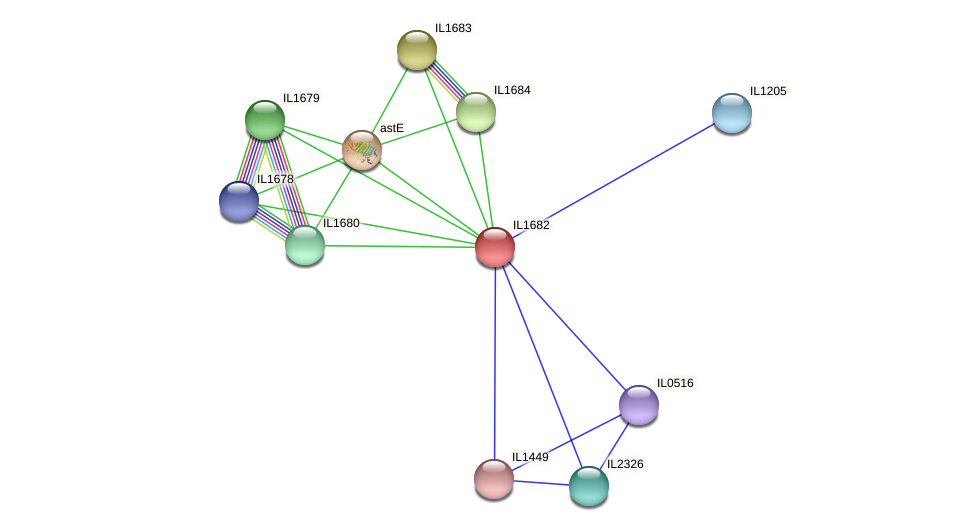 IL1682 protein (Idiomarina loihiensis) - STRING interaction network