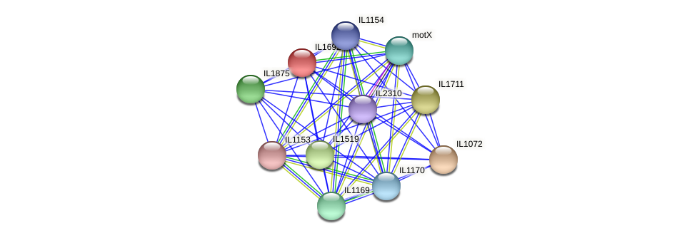 IL1692 protein (Idiomarina loihiensis) - STRING interaction network