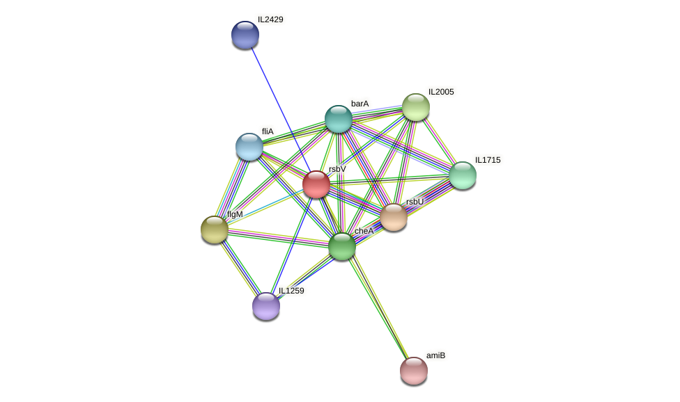 rsbV protein (Idiomarina loihiensis) - STRING interaction network