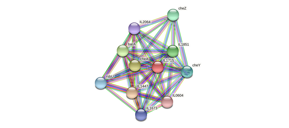 IL1715 protein (Idiomarina loihiensis) - STRING interaction network