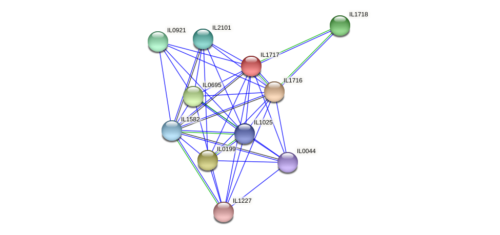 IL1717 protein (Idiomarina loihiensis) - STRING interaction network
