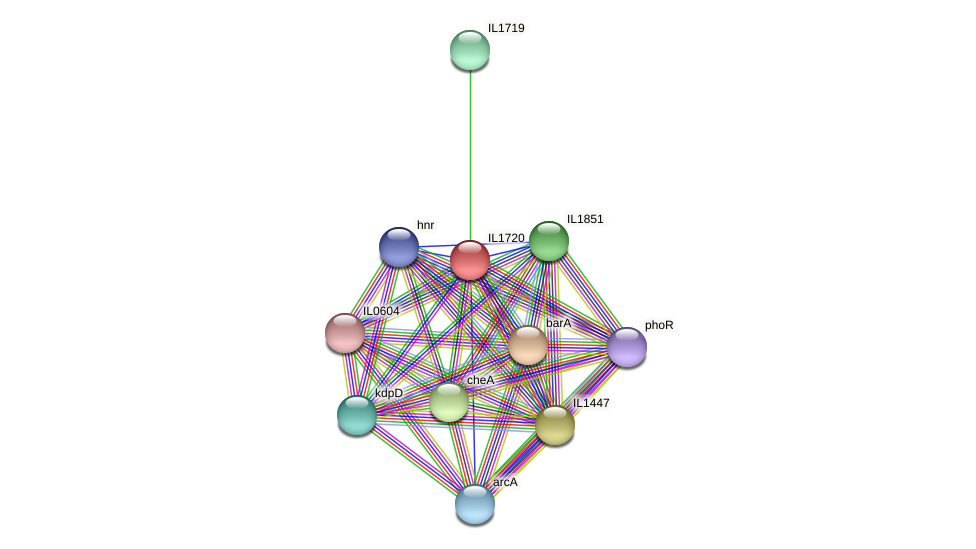 IL1720 protein (Idiomarina loihiensis) - STRING interaction network