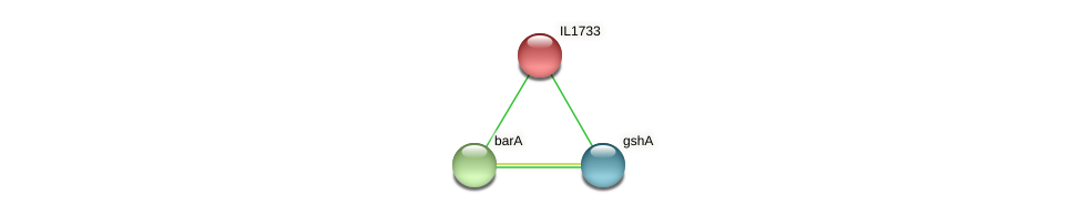 IL1733 protein (Idiomarina loihiensis) - STRING interaction network