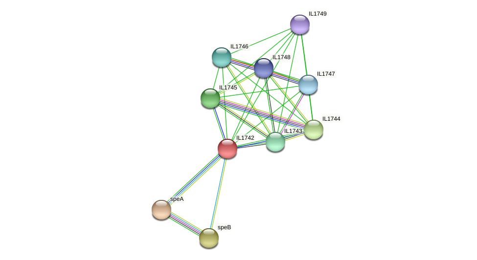 IL1742 protein (Idiomarina loihiensis) - STRING interaction network