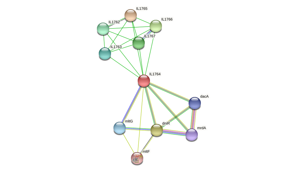 IL1764 protein (Idiomarina loihiensis) - STRING interaction network