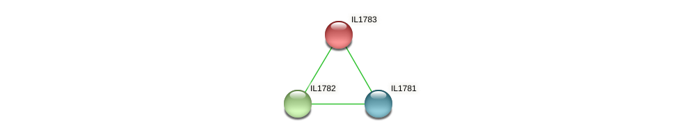 IL1783 protein (Idiomarina loihiensis) - STRING interaction network