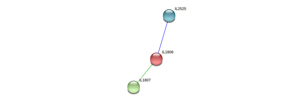 IL1806 protein (Idiomarina loihiensis) - STRING interaction network
