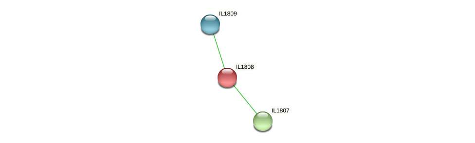 IL1808 protein (Idiomarina loihiensis) - STRING interaction network