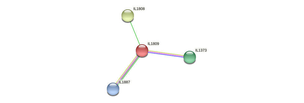 IL1809 protein (Idiomarina loihiensis) - STRING interaction network