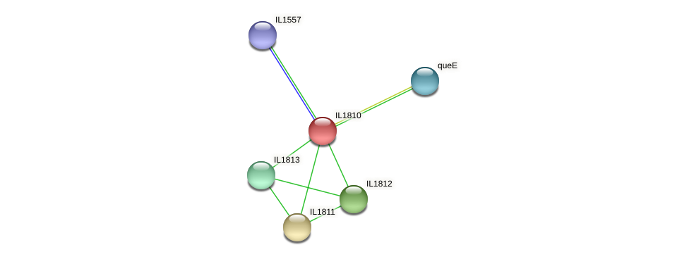 IL1810 protein (Idiomarina loihiensis) - STRING interaction network