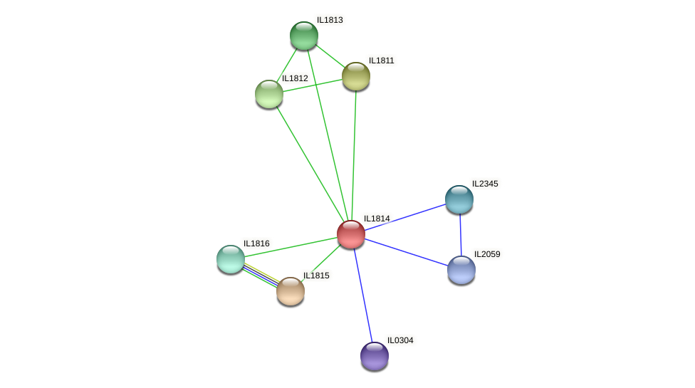 IL1814 protein (Idiomarina loihiensis) - STRING interaction network