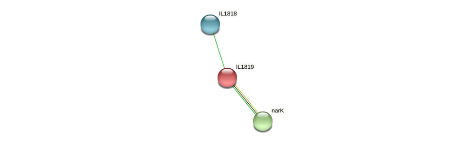 IL1819 protein (Idiomarina loihiensis) - STRING interaction network