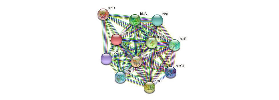 hisB protein (Idiomarina loihiensis) - STRING interaction network