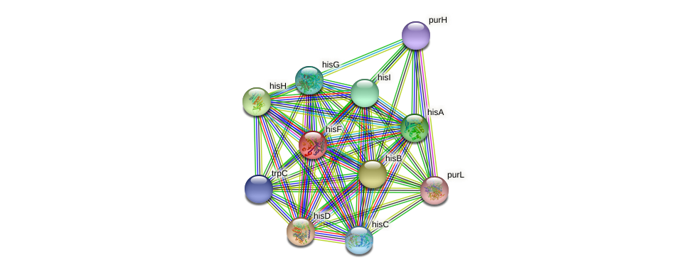 hisF protein (Idiomarina loihiensis) - STRING interaction network