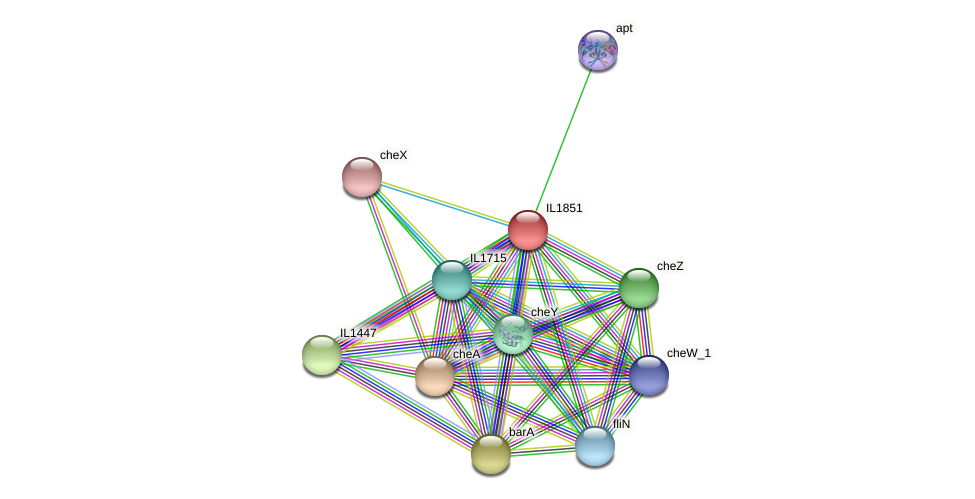 IL1851 protein (Idiomarina loihiensis) - STRING interaction network