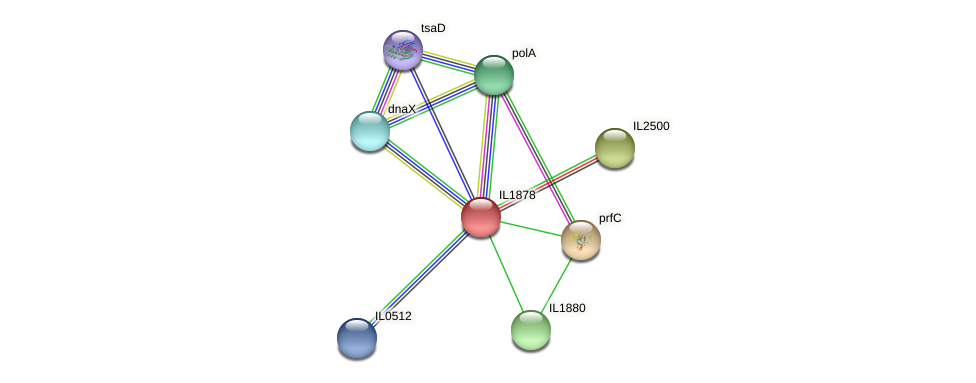 IL1878 protein (Idiomarina loihiensis) - STRING interaction network