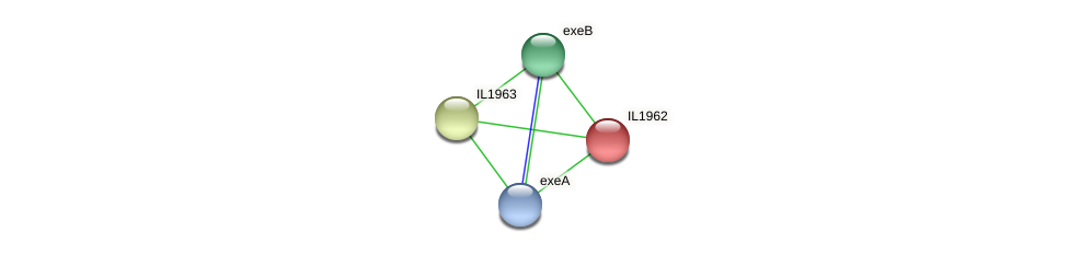 IL1962 protein (Idiomarina loihiensis) - STRING interaction network