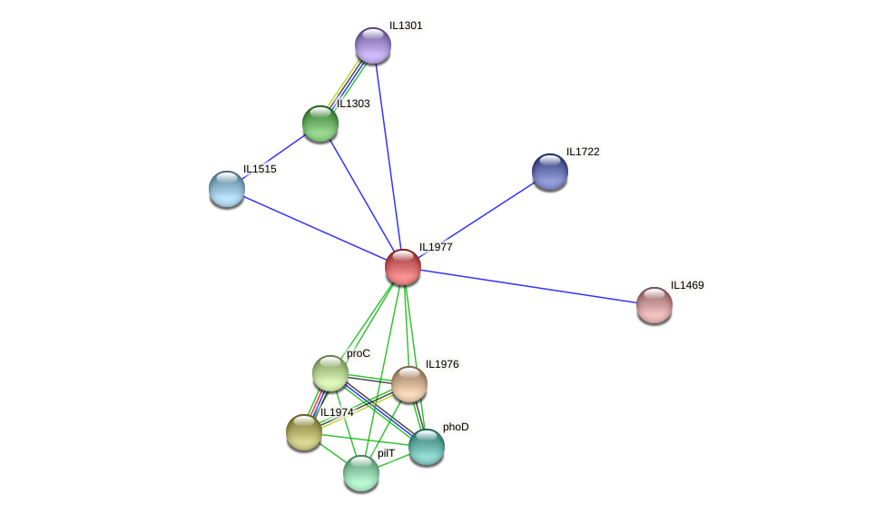 IL1977 protein (Idiomarina loihiensis) - STRING interaction network