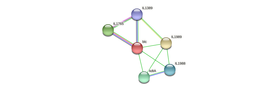 blc protein (Idiomarina loihiensis) - STRING interaction network
