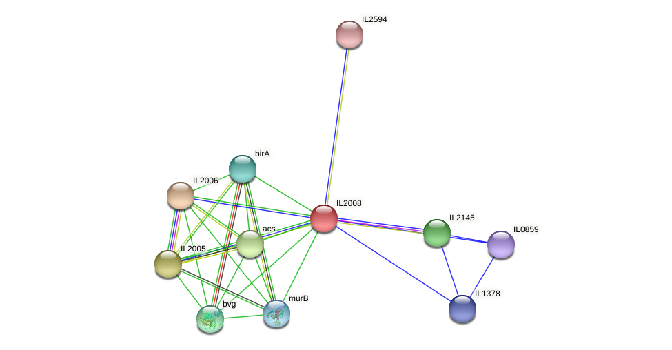 IL2008 protein (Idiomarina loihiensis) - STRING interaction network