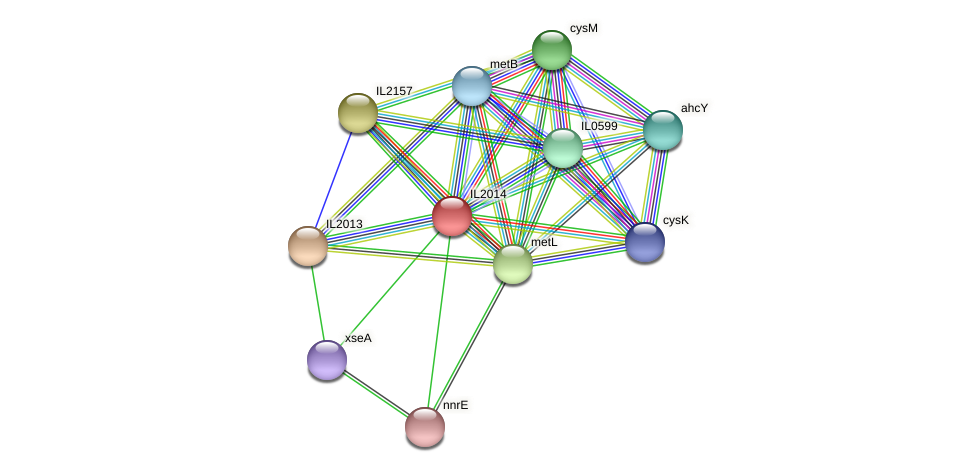 IL2014 protein (Idiomarina loihiensis) - STRING interaction network