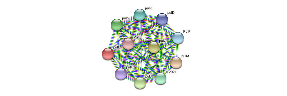 pulL protein (Idiomarina loihiensis) - STRING interaction network