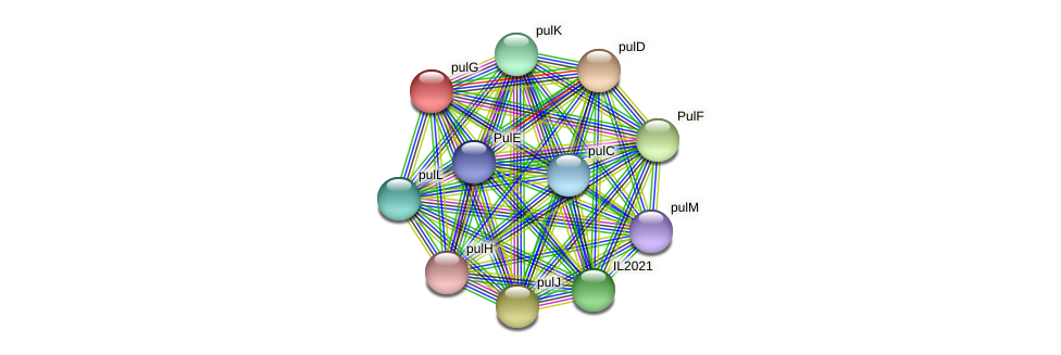 pulG protein (Idiomarina loihiensis) - STRING interaction network