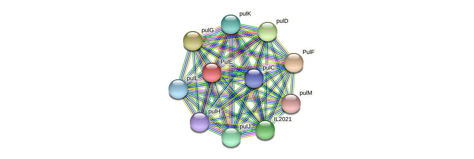IL2025 protein (Idiomarina loihiensis) - STRING interaction network