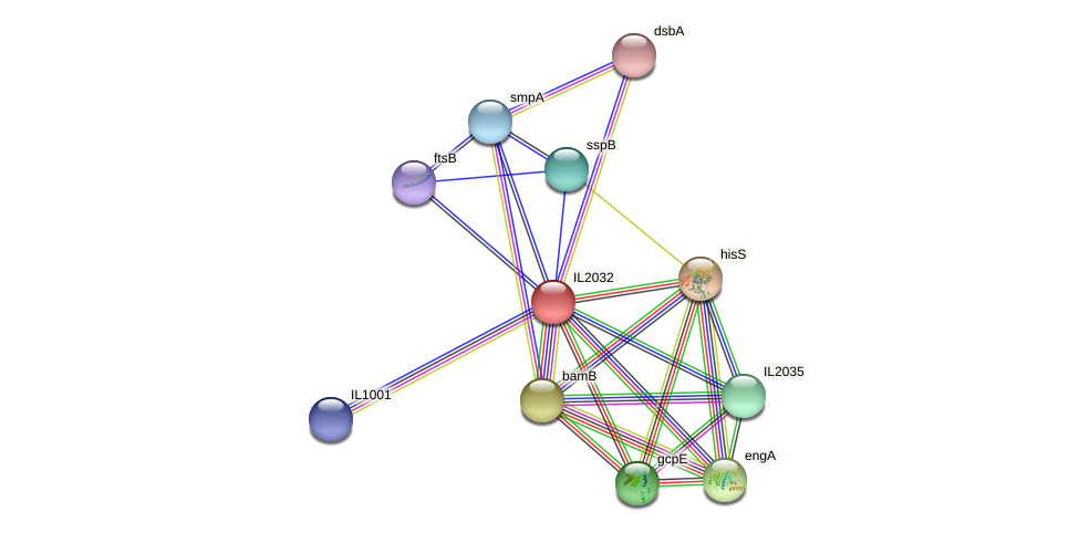 IL2032 protein (Idiomarina loihiensis) - STRING interaction network