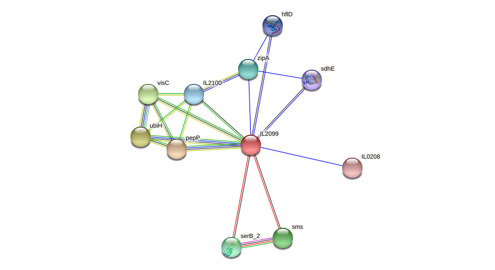 IL2099 protein (Idiomarina loihiensis) - STRING interaction network