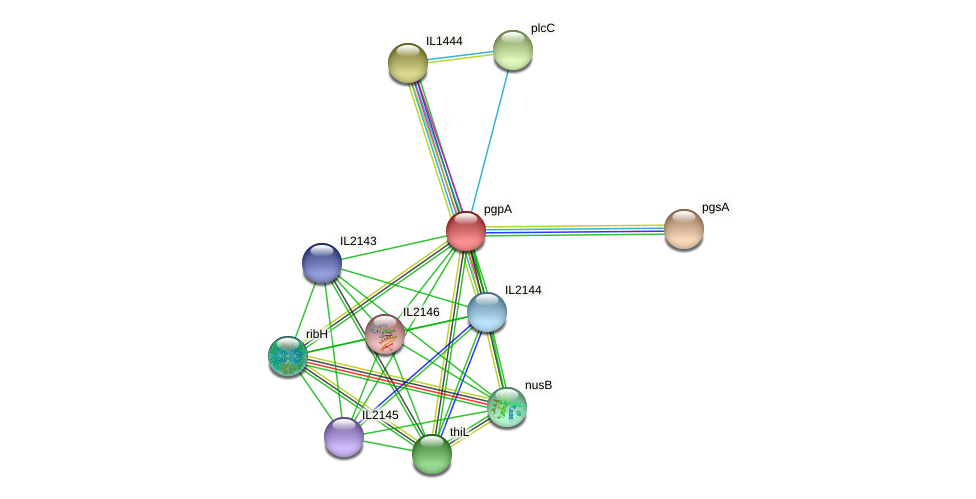 pgpA protein (Idiomarina loihiensis) - STRING interaction network