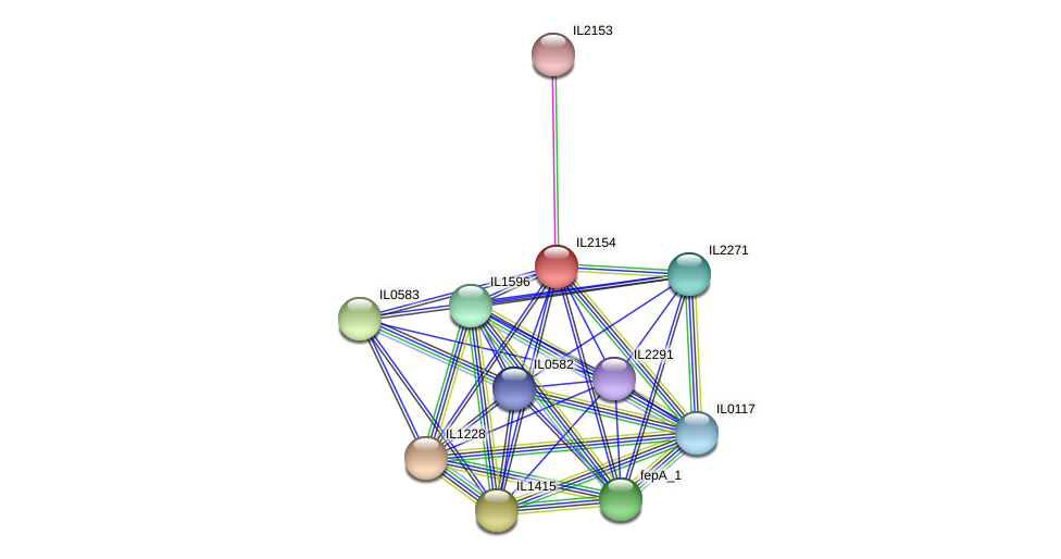 IL2154 protein (Idiomarina loihiensis) - STRING interaction network