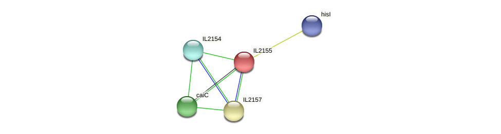 IL2155 protein (Idiomarina loihiensis) - STRING interaction network