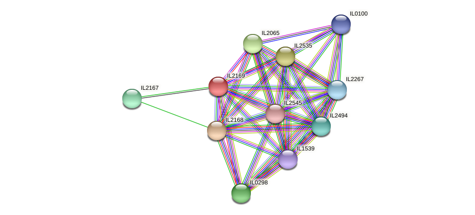 IL2169 protein (Idiomarina loihiensis) - STRING interaction network